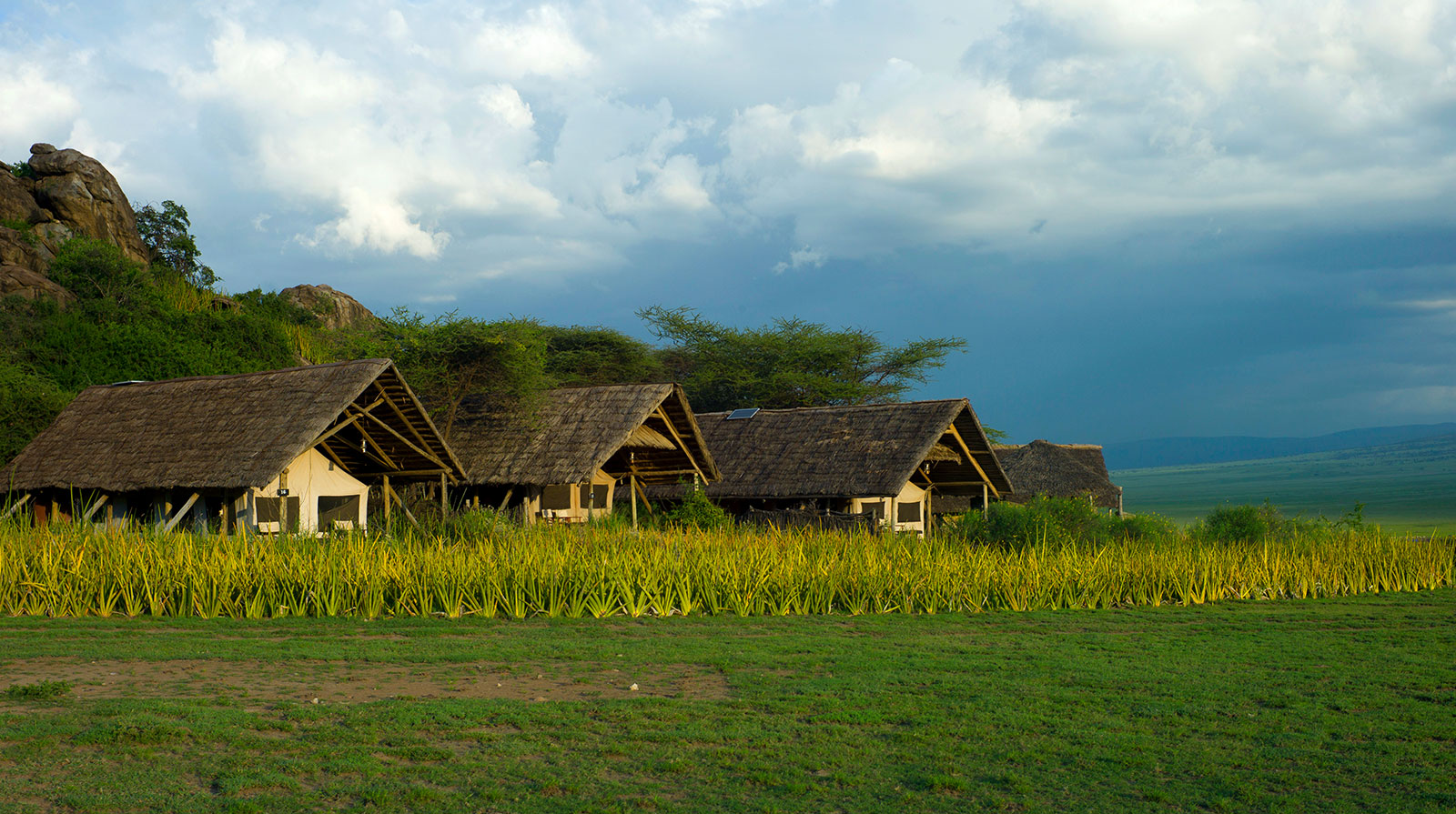 Olduvai Camp - Comfort and authenticity